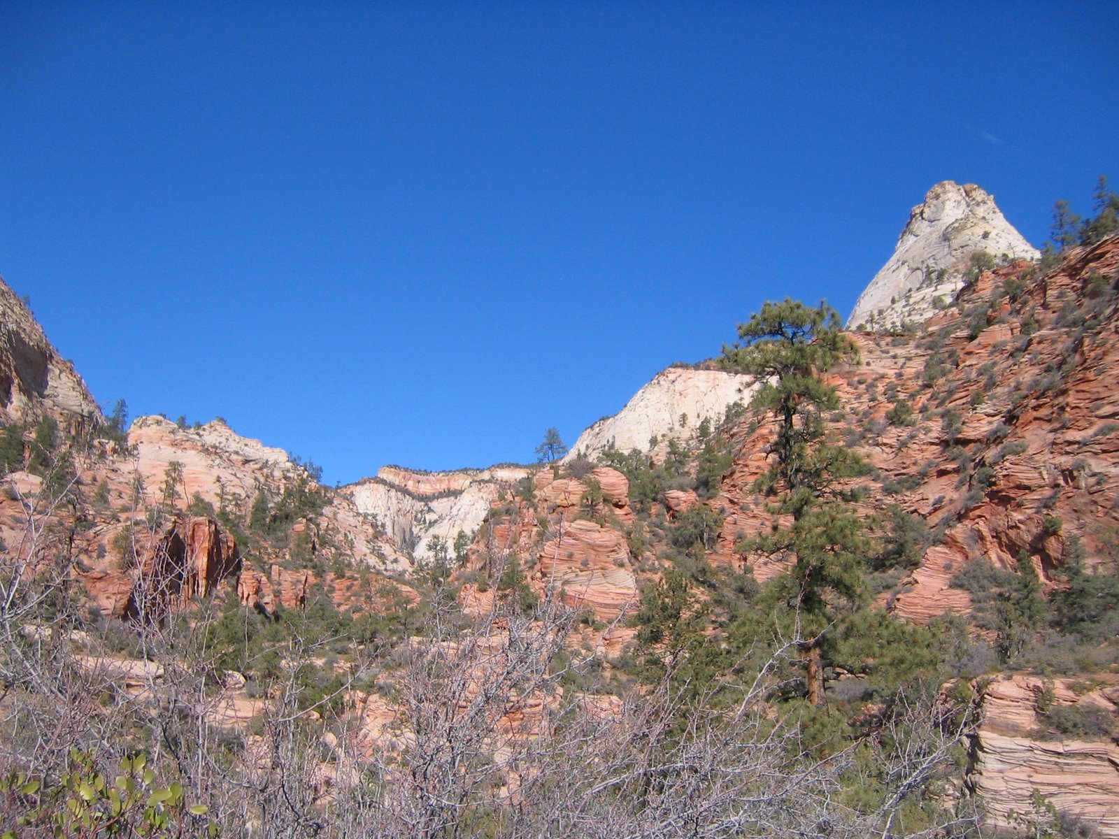 The east side of Zion National Park.