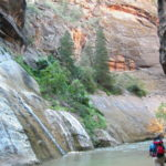 The Narrows in Zion National Park.